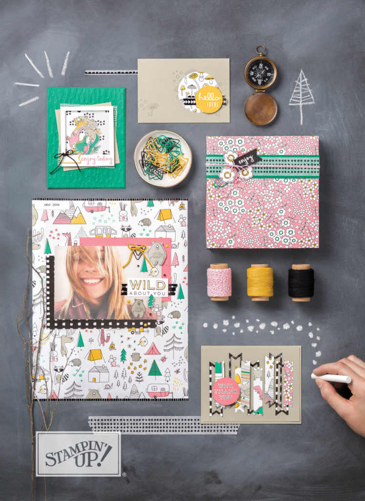PICK A PATTERN SUITE, PICK A PATTERN DSP, STAMPIN' UP!
