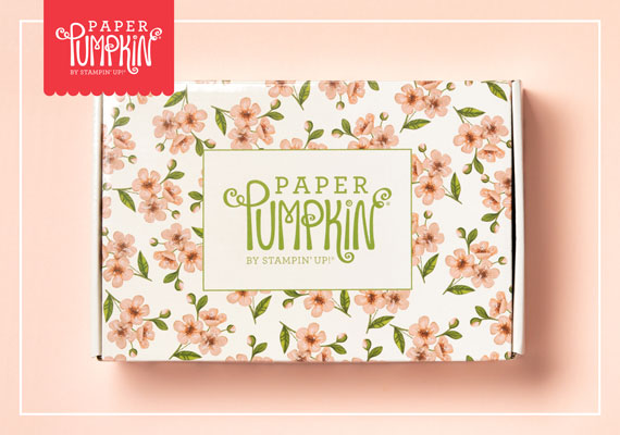 Paper Pumpkin May 2019 Box
